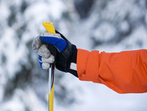 Hand und Ski Pole Stockfotos