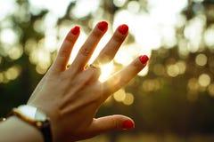 Hand- und Sonnenstrahlen Stockbild