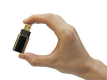 Hand with usb flash memory Stock Images