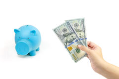 Hand with usd money Royalty Free Stock Photo