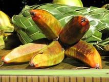 Hand van bananen Stock Afbeeldingen