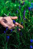 Hand van een meisje met blauwe bloemen op het gras royalty-vrije stock fotografie