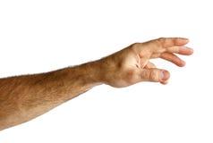 Hand van een mens Stock Foto