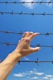Hand van gevangenis Stock Afbeelding