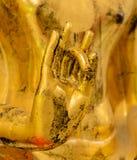 Hand van gouden Boedha royalty-vrije stock foto's