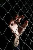 Hand van hoop Stock Foto's