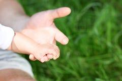 Hand van kind (zonen) in een hand van vader Royalty-vrije Stock Foto's