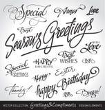 Hand van letters voorzien geplaatste vakantiegroeten (vector) Royalty-vrije Stock Foto
