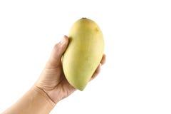 Hand van vrouwen en mangofruit op witte achtergrond wordt geïsoleerd die Stock Foto's