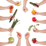 Hand vegetable set Royalty Free Stock Image