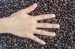 Hand ` 5 vinger ` op koffiebonen Royalty-vrije Stock Fotografie