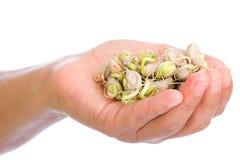 Hand voll der Sojabohnensprossen Stockbild