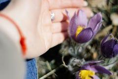 Hand von Blumen des jungen Mädchens und des Schlafgrases lizenzfreies stockfoto
