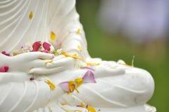Hand von Buddha Asien lizenzfreies stockfoto