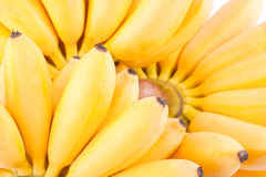 Hand von goldenen Bananen auf weißer Hintergrund dem gesunden Fruchtlebensmittel Pisang Mas Banana lokalisiert Stockbilder