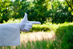 Hand of a waiter in a white glove showing a sign against a nature background. The waiter`s hand in a white glove and with a white napkin shows with the fingers a Stock Photography