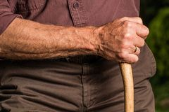 Hand, Walking Stick, Arm, Elderly Royalty Free Stock Image