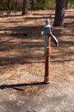 Hand Water Pump. A hand water pump on a concrete slab in an open woodland royalty free stock image