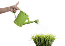 Hand with a watering can over a white background Stock Images