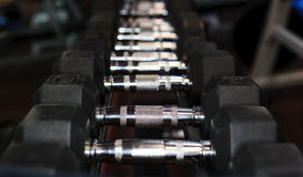 Hand weights in a gym Royalty Free Stock Images