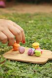 Hand were picked colorful of macaron on a brown tray Stock Photos
