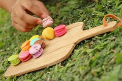 Hand were picked colorful of macaron on a brown tray Royalty Free Stock Photo