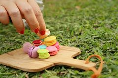 Hand were picked colorful of macaron on a brown tray Stock Photo