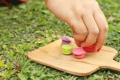Hand were picked colorful of macaron on a brown tray Stock Images
