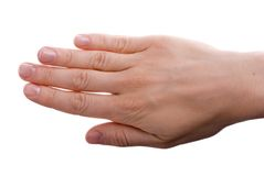 Hand on white Royalty Free Stock Image