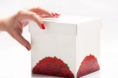 Hand with white box. Woman's hand and white box on white background Stock Photography