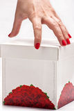 Hand with white box. Woman's hand and white box on white background Royalty Free Stock Photo