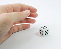 Hand with White Dice Royalty Free Stock Photo
