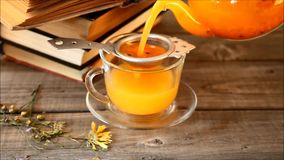 Hand of a white woman pours sea-buckthorn tea from transparent teapot into glass cup. Close-up view. Hand of a white woman pours sea-buckthorn tea from stock footage