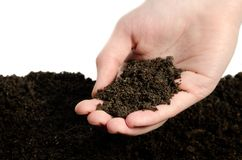 Hand whith soil Royalty Free Stock Photography