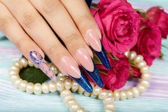Hand wiith long artificial french manicured nails and pink rose flowers. Hands with beautiful long artificial blue french manicured nails and pink rose flowers Stock Photo