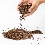 In hand witte achtergrond van koffiebonen Royalty-vrije Stock Foto