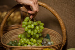 Hand of woman buying bunch of grapes Royalty Free Stock Photo