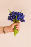 Hand of woman holding a bunch of beautiful spring blue flowers. Royalty Free Stock Images