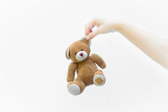 Hand woman holding ear brown teddy bear toy on white. Background Royalty Free Stock Photo