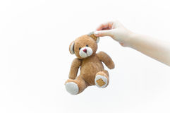 Hand woman holding ear brown teddy bear toy on white Stock Photos