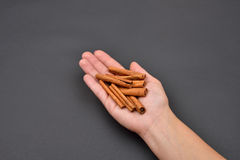 Hand of a woman holding a pile of cinnamon pods isolated on blac Stock Photos