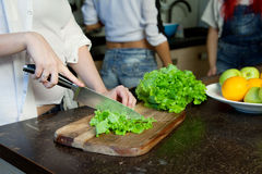 Hand of a woman housewife preparing dinner Stock Images
