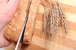 Hand of woman slicing fresh bread, ears of wheat Royalty Free Stock Photography