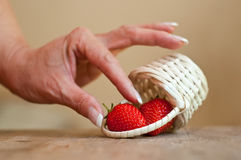 Hand of woman with strawberries Royalty Free Stock Photography