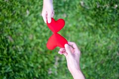 Hand women send red heart and hand men send red heart for Exchange hearts, Double heart, grass Background stock photography
