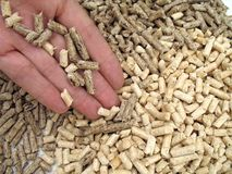 Hand and wood pellets Stock Image