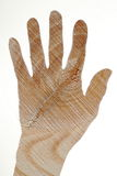 Hand with wood texture Royalty Free Stock Images
