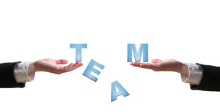 Hand and the word TEAM - business concept. Hand and the word - business concept (isolated on white background royalty free stock images