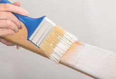 Hand worker holding brush painting white. On wood Royalty Free Stock Image