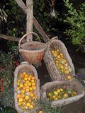 Hand-woven baskets. in Italy. stock photo